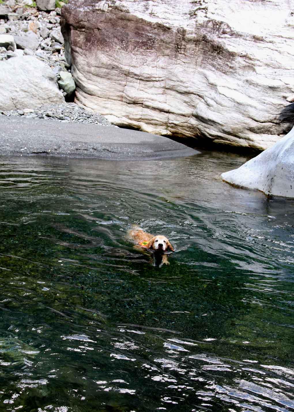 天然プールにて(3)