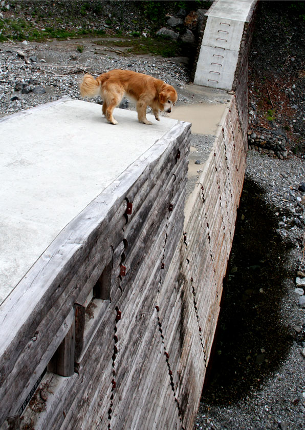 堰堤の上で(2)