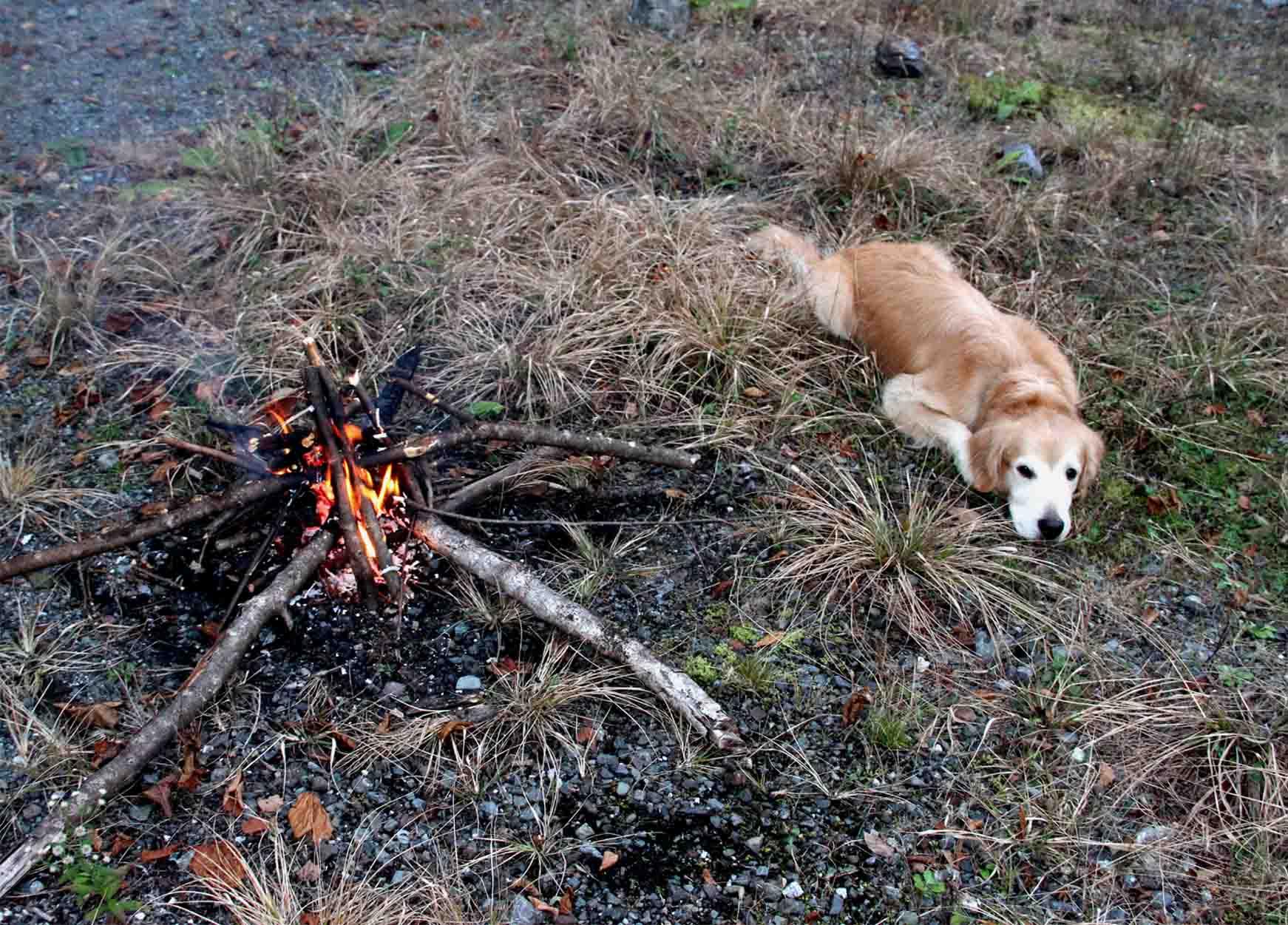 焚き火の前で(3)