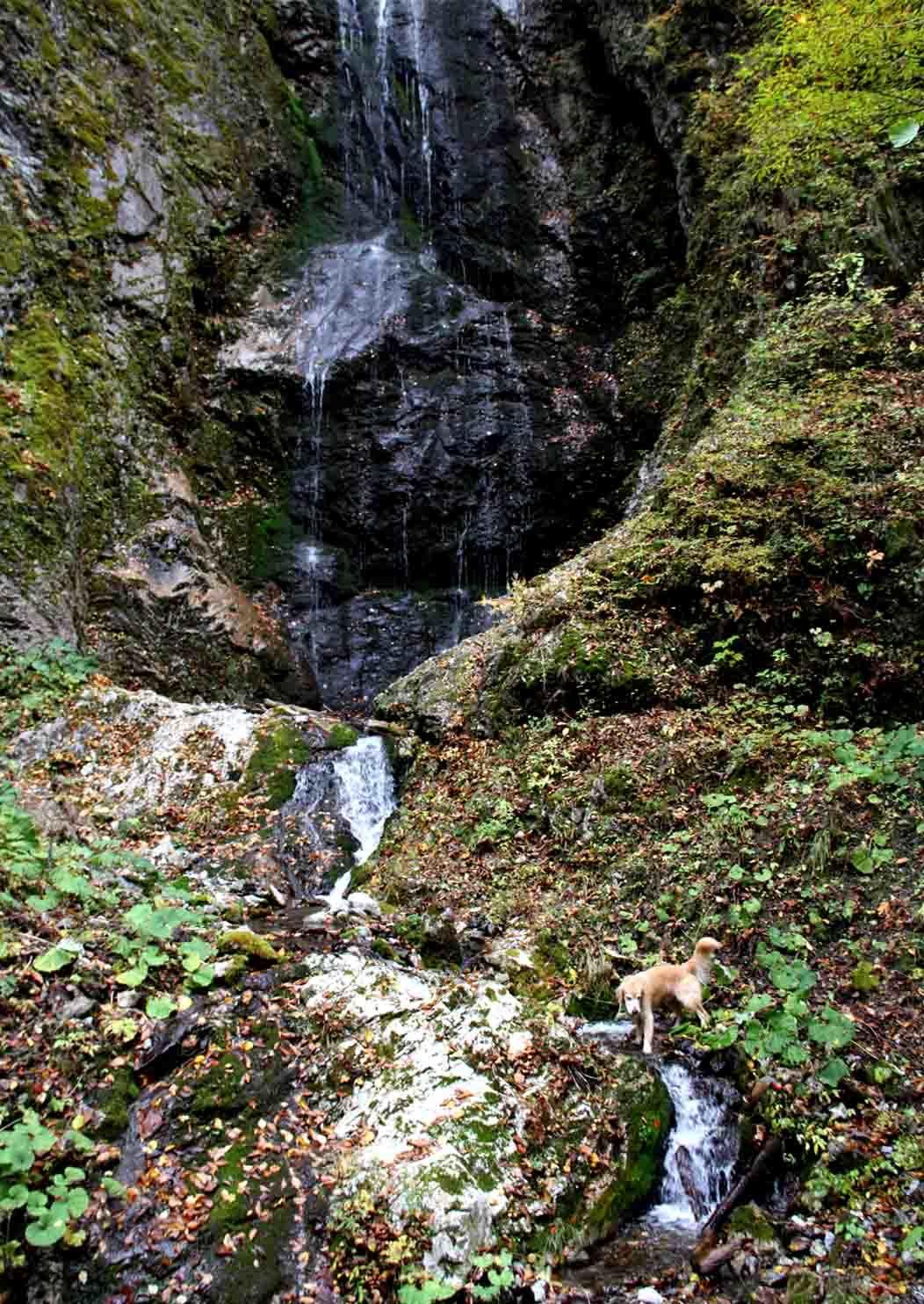 巫女淵の滝でa(2)