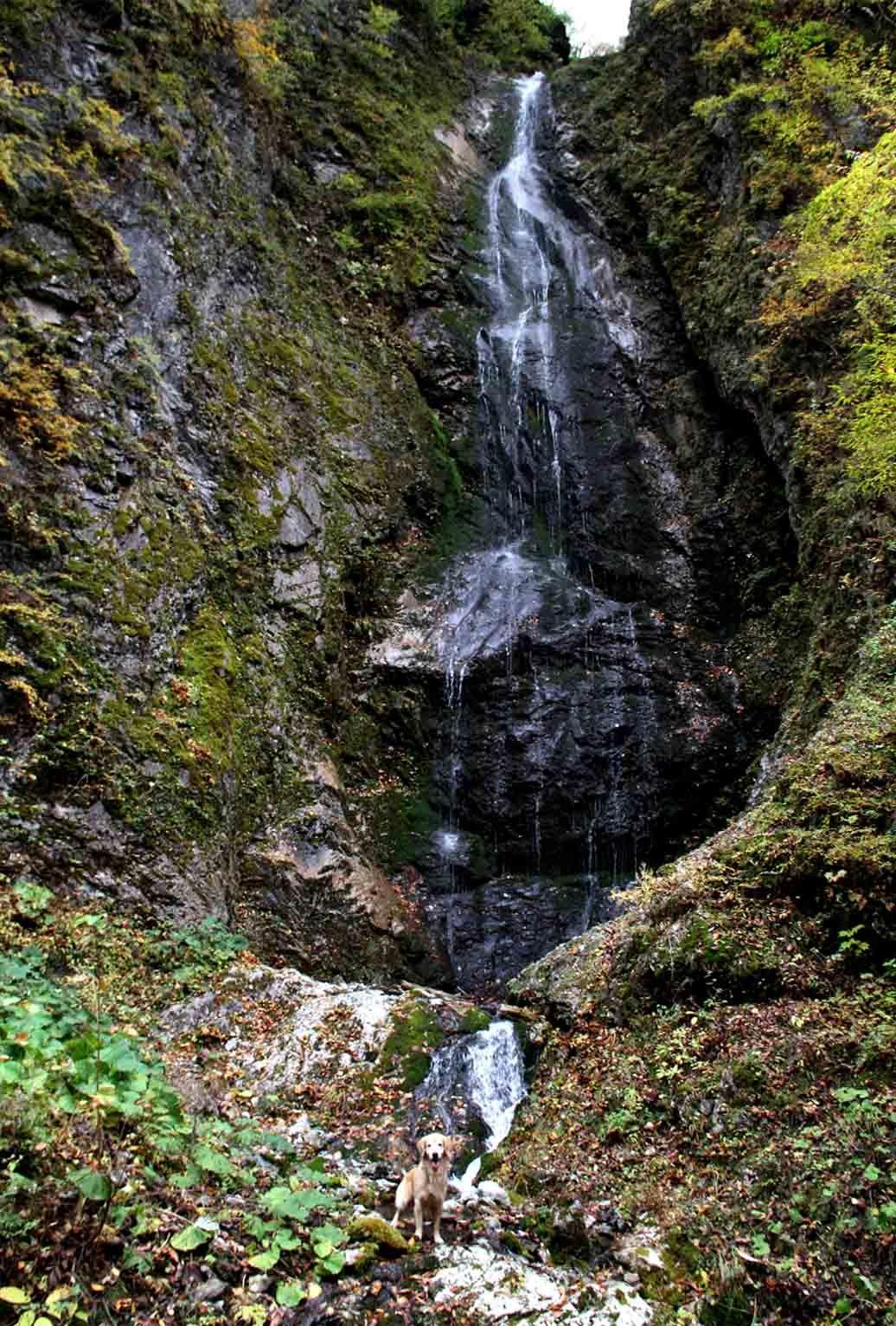巫女淵の滝でa(3)