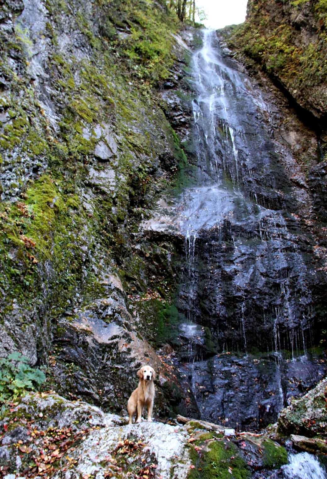 巫女淵の滝でa(4)