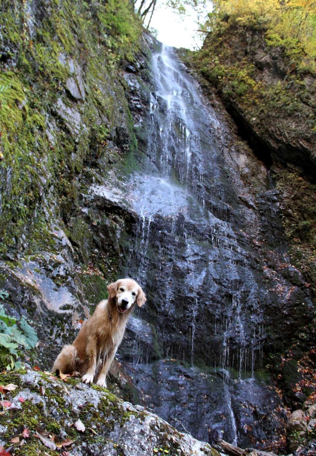 巫女淵の滝でa(5)