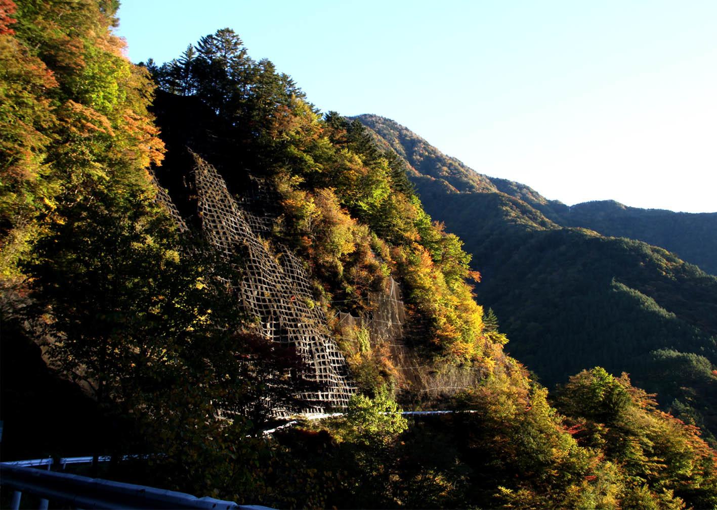 大井川上流(5)