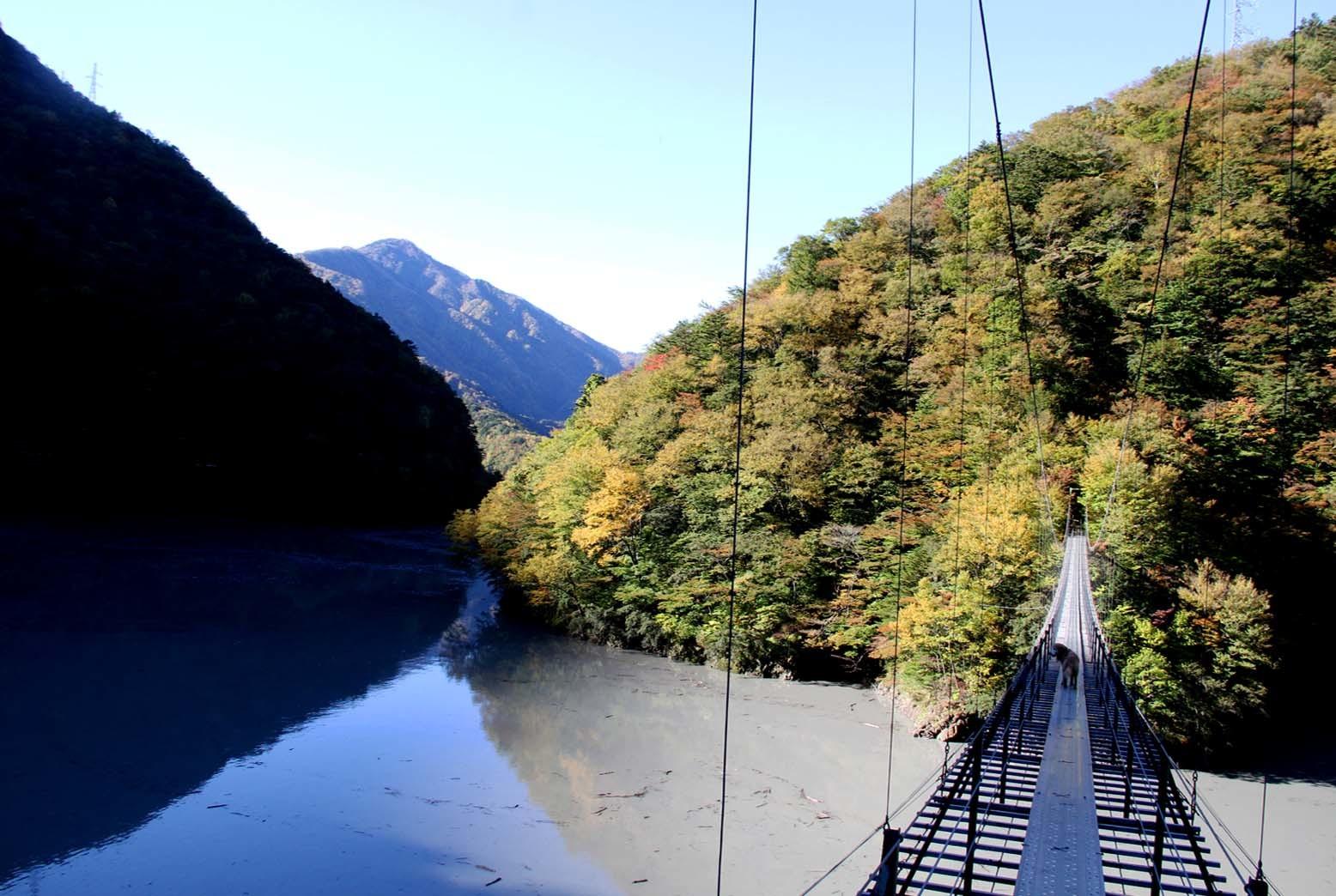 畑薙大吊橋(4)