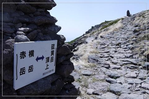 160522iouyoko103.jpg