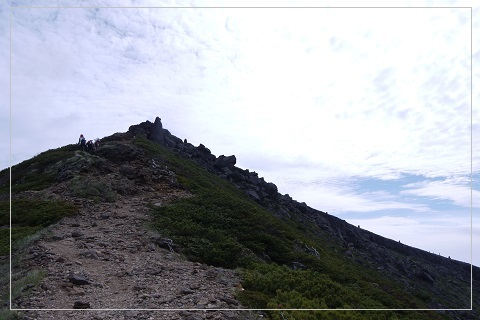 160619yoko-io31.jpg