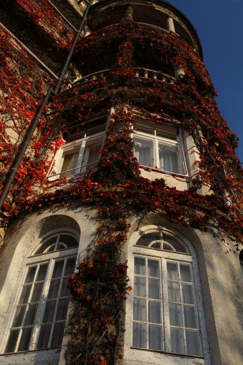 外国秋の風景