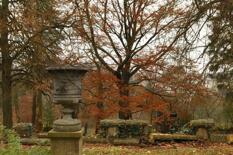 ヨーロッパの秋
