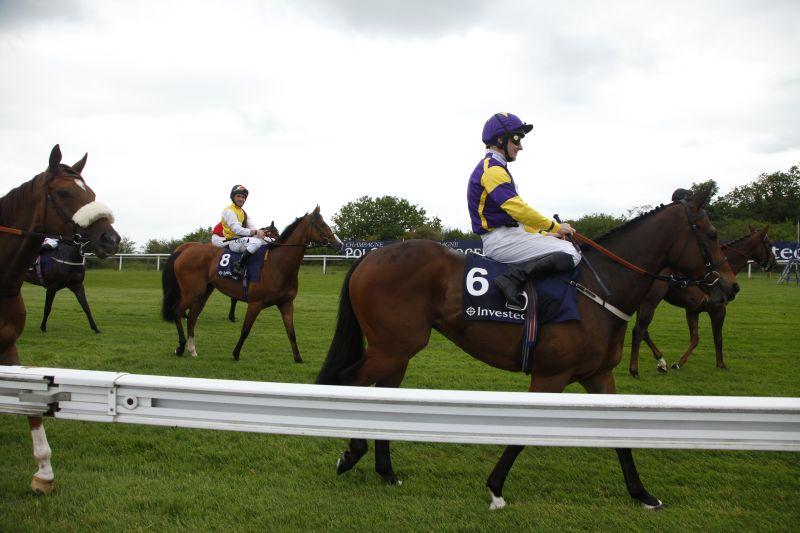 ヨーロッパ競馬