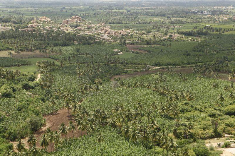 マタンガの丘