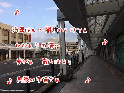 IMG_4010.jpg