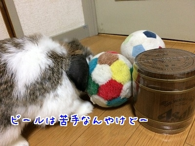 IMG_4386.jpg