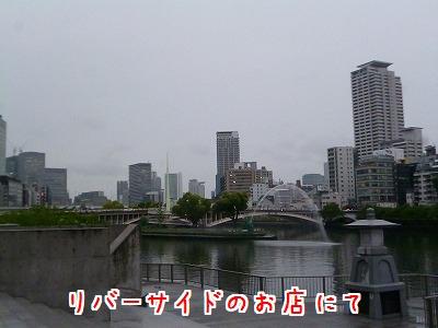 P1260055.jpg