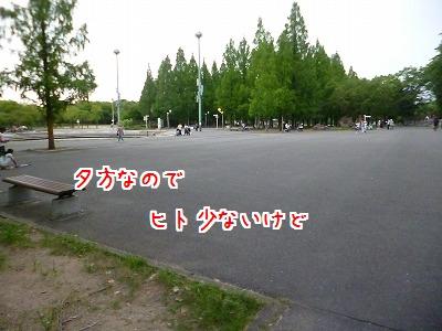 P1260360.jpg