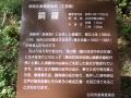DSCF0420.jpg