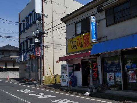 2016-06-11 びんびん豚 001