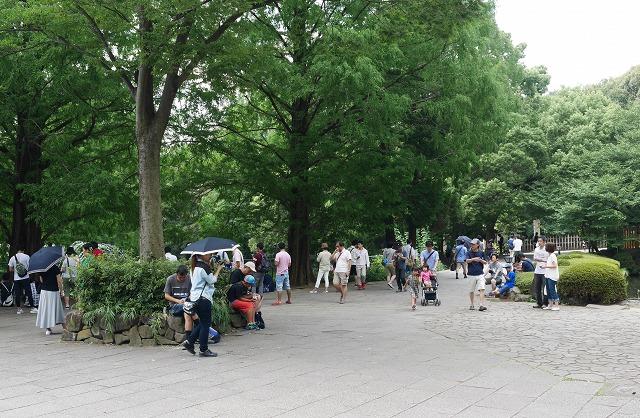 2016-08-13 大宮公園 002