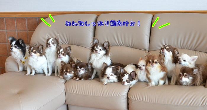 DSC_9944_201609292044090bd.jpg