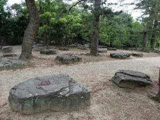 80国分寺-礎石26