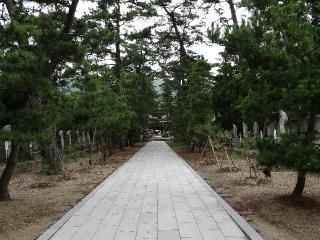 80国分寺-松26