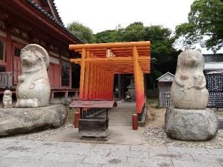 84屋島寺-タヌキ26