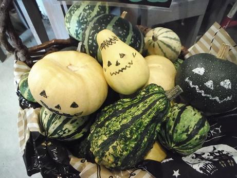 20160917かぼちゃ