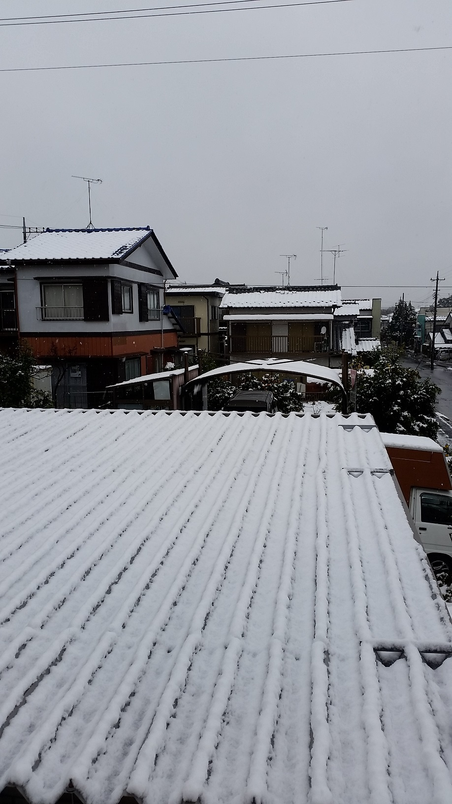 2016年初雪