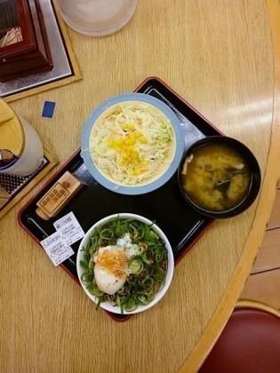 松屋ネギたっぷりプレミアム旨辛ネギたま牛めしミニ盛、生野菜1