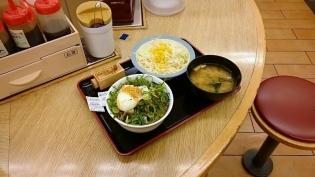 松屋ネギたっぷりプレミアム旨辛ネギたま牛めしミニ盛、生野菜4