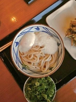 丸亀製麺とろ玉うどん(並)(温)、黒ごまほくほくかき揚げ1