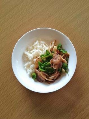 牛肉とピーマンと葱の炒め(醤覇香味醤油味)1