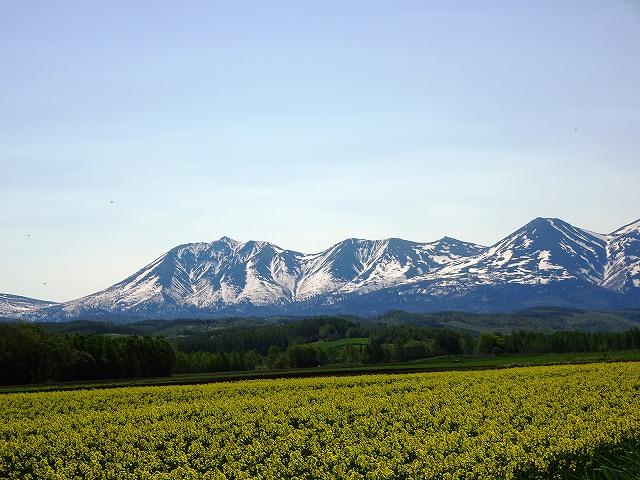 s-キガラシと山