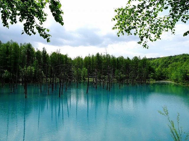 s-青い池5月
