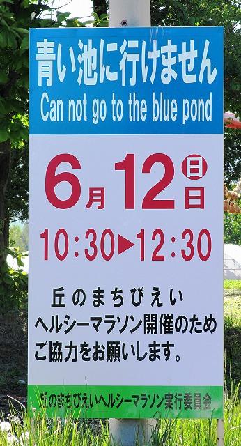 s-青い池には行けません。