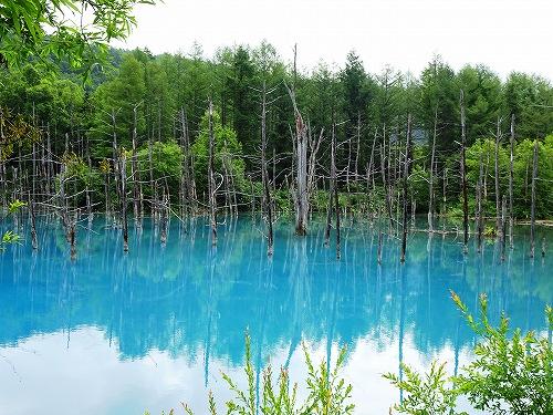 s-16日 青い池
