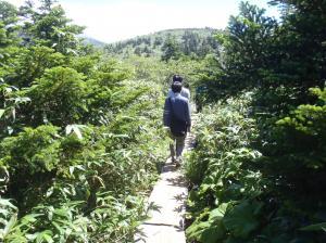 八甲田山頂の遊歩道