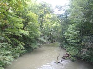 馬門橋から見た奥入瀬の流れ