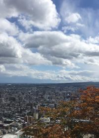 円山公園内の山の頂上