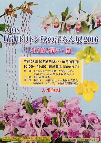 AJOS 晴海トリトン 秋の洋ラン展 2016