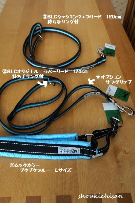 eeDSC05661.jpg
