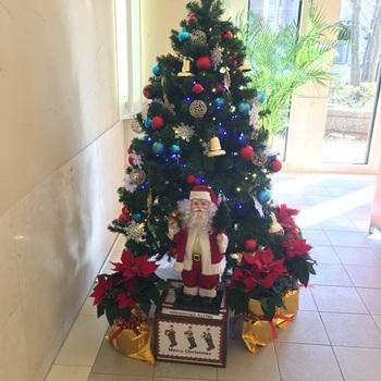 クリスマスツリー0