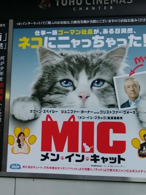 IMG_20161217_160844.jpg
