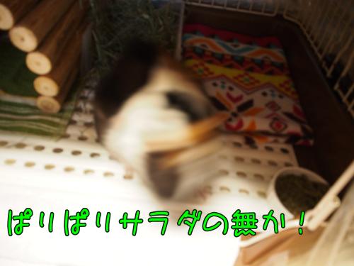 20140417souji.png