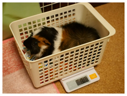 20150508weight4.png