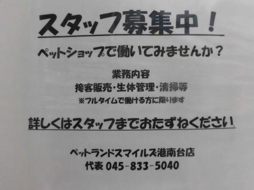 s-1217-6-1.jpg
