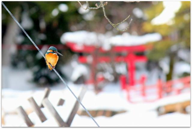 新年あけましておめでとうございます!写真事務所スナップハッピーフォト