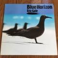 鳥ジャケ BlueHorizon