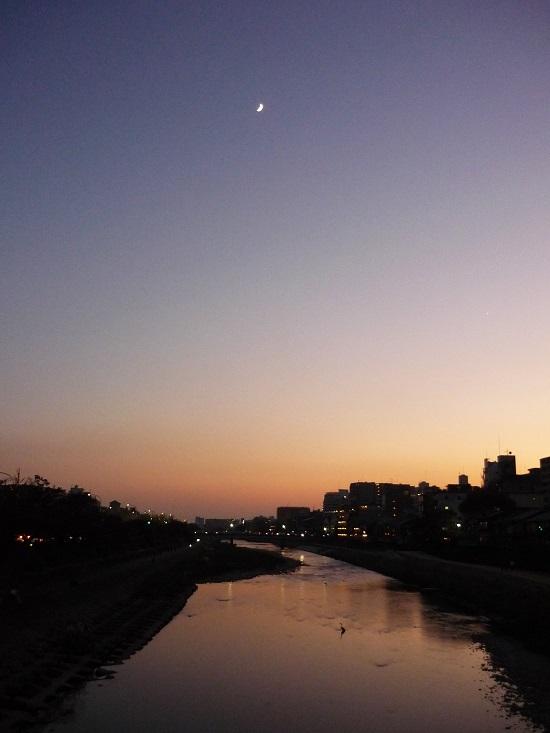 2016.11.5鴨川その2