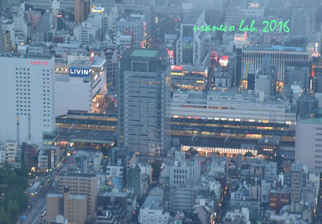 8月3日空の木より錦糸町駅付近
